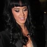 Definitivno je! Russell Brand zaprosio Katy Perry u Indiji!