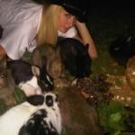 Paris Hilton udomila 20 zečeva
