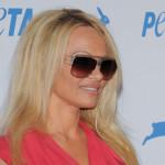 Pamela Anderson ponovo u problemima