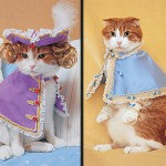 Mace spremne za modnu pistu