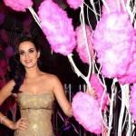 """Katy Perry: """"Američki Idol predstavlja suviše veliku obavezu za mene"""""""