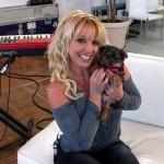 Hannah – nova članica porodice Britney Spears!
