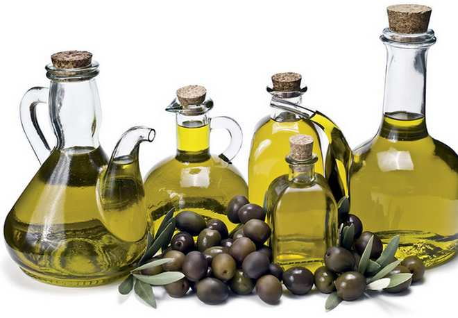 zp maslinovo-ulje2