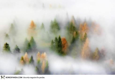 autumn-photography-6-490x342