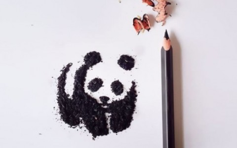 pencil-shavings-artworks-meghan-maconochie-15-578x420
