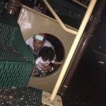 Potpuno novi čovek: Chris Brown poveo ćerkicu na turneju